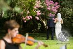 And I Love Her Violins image