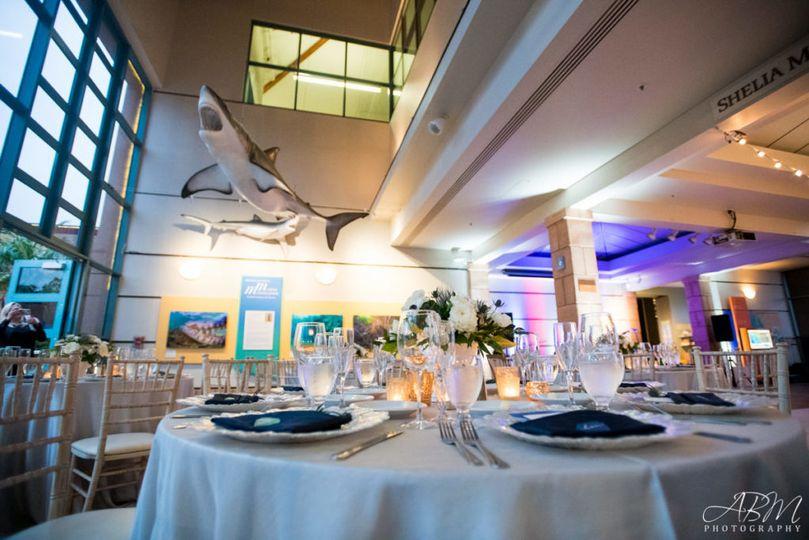 birch aquarium at scripps san diego wedding photographer 0047 1024x683 51 728654 161066212871808