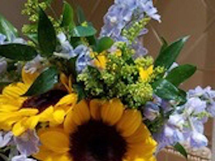 Tmx 1509996402430 Yb4 Laurel, MD wedding florist