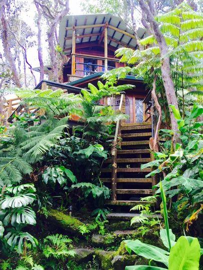 treehouse for honeymoon