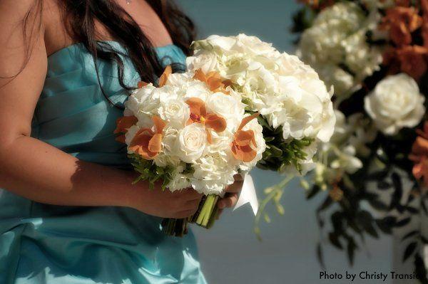 Tmx 1338050721353 Transierphotography8 Miami, FL wedding planner