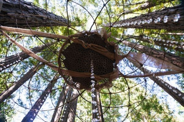 Tmx 1414472507093 Dreamcatcher Upview1 Santa Cruz, CA wedding planner