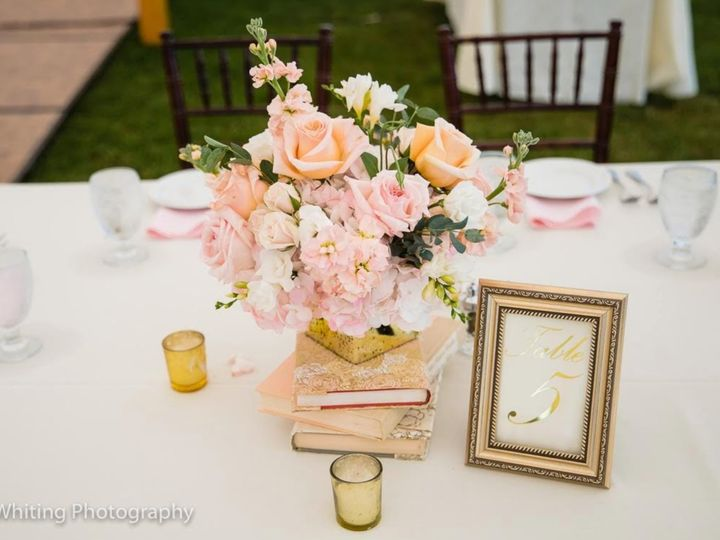 Tmx Q8ugbu8q 51 75854 160028015621196 Dennis Port, Massachusetts wedding planner
