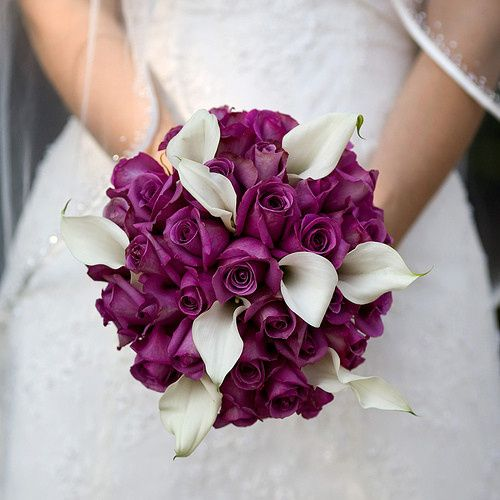 Tmx 1452787168523 2078755804623e354d3520287069075o West Palm Beach, FL wedding florist