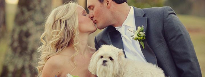 Newlyweds kissing and their dog