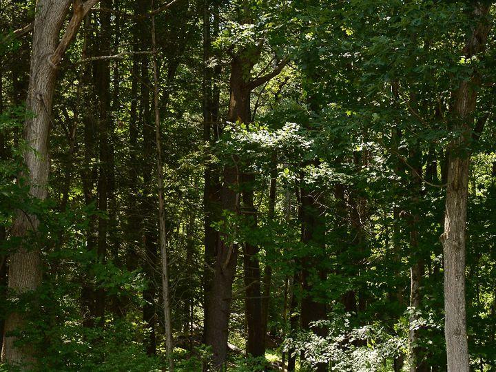 Tmx 1511041557289 Dsc7698 East Stroudsburg, Pennsylvania wedding photography