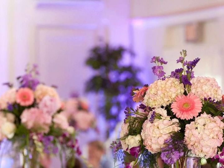 Tmx 1533661499 D07419753893631e 1533661498 Adc9115f15aa1eba 1533661498053 3 552799 10151611171 Saint Petersburg, FL wedding florist