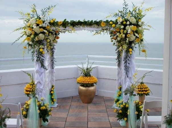 Tmx M6380103 1936357 105050377461 1974784 N 51 386064 1565111642 Saint Petersburg, FL wedding florist