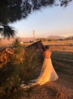 bride and horse 51 1004164 v1