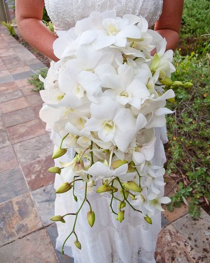 800x800 1344577476219 whiteorchidscascadingbouquet