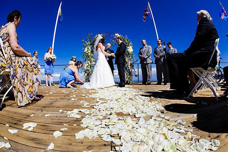 Petals scattered across the wedding aisle