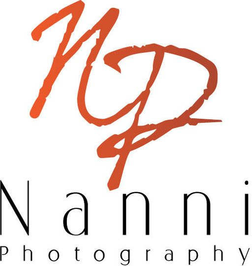 209628da27b9af02 nanni logo 1