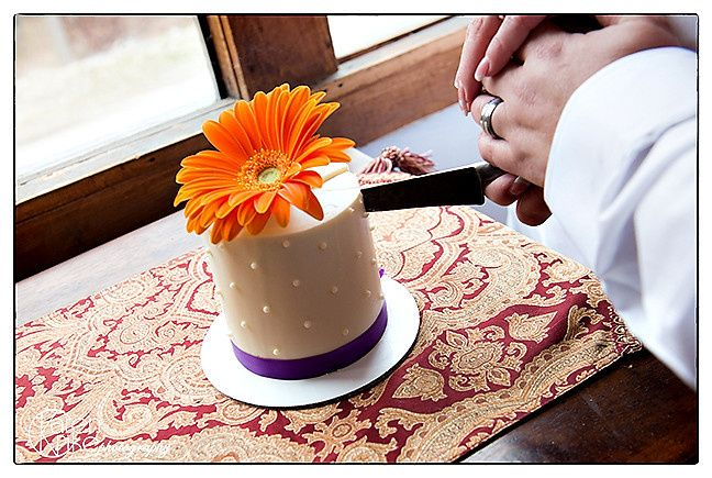 Tmx 1426282820134 Baby Cake Charlotte wedding officiant