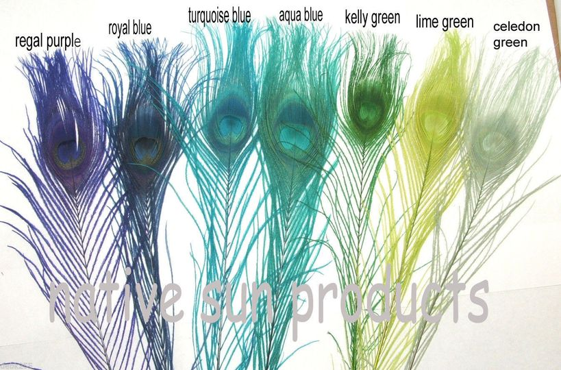7 of our beautiful dyed peacock feather colors:  L-R Regal purple, Royal blue, Turquoise blue, Dark...