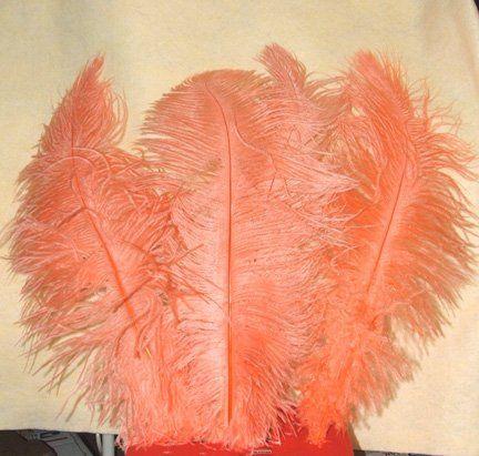 Tmx 1337817574612 Peach19inch Menomonee Falls wedding florist
