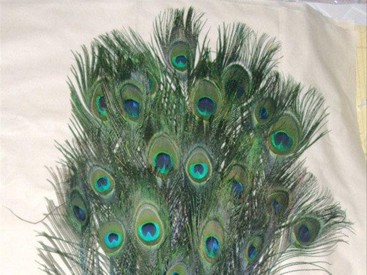 Tmx 1459969848607 Stem Dyed Turquoise Blue 30 35 Inch Full View Menomonee Falls wedding florist