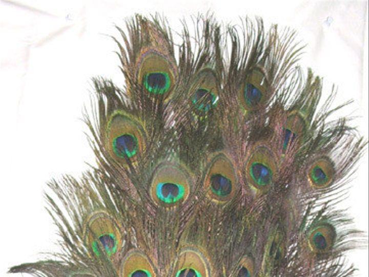 Tmx 1459970068185 Stem Dyed Yellow 30 35 Inch Menomonee Falls wedding florist
