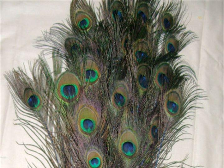Tmx 1459970533470 Stem Dyed 30 35 Inch Royal Blue Menomonee Falls wedding florist