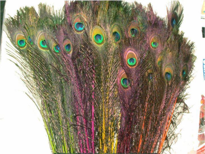 Tmx 1459970877174 Neon Mix Composite Menomonee Falls wedding florist