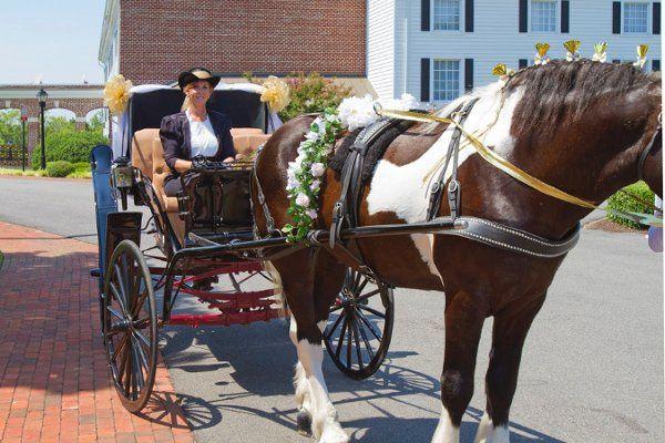 Tmx 1315541983711 TerriArrivalsInElegance Charles City, VA wedding transportation