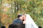 Arrivals In Elegance Horse Drawn Carriage Services, LLC image