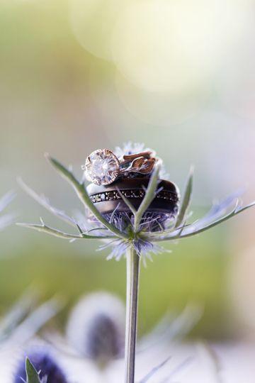 d13cd324ab3c139f 1526925212 7bec0a3625b17b7a 1526925206678 3 NJ Wedding Photogr
