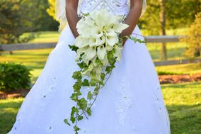 Elegant Wedding & Event Planning
