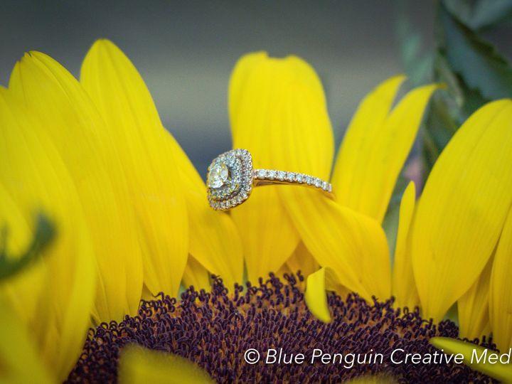 Tmx 1501278941295 Bluepenguinphotography Durant072217 Mesa, AZ wedding videography