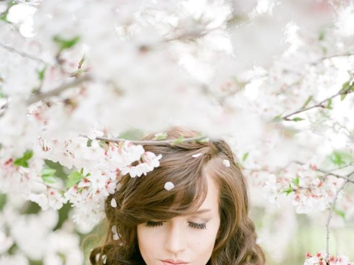 Tmx 1371305707784 Napa Cornelius, North Carolina wedding dress