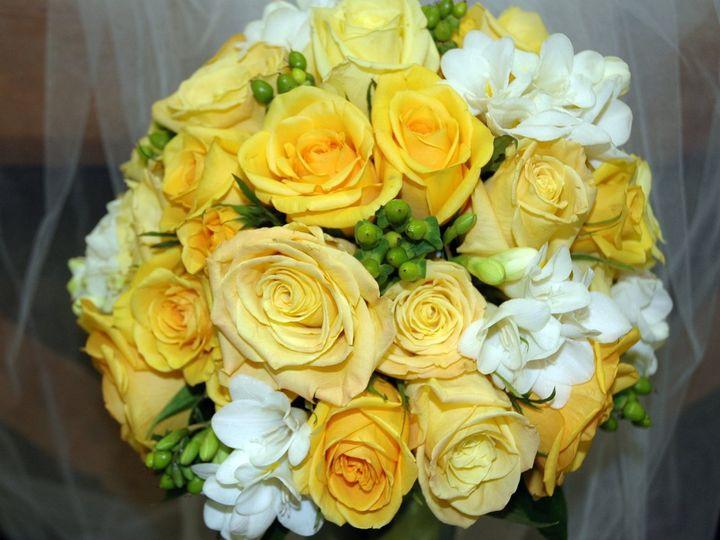 Tmx 1345559472584 DSC4932 Willow Grove, Pennsylvania wedding florist