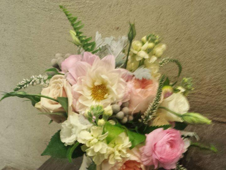 Tmx 1415123582056 Paledahlias Willow Grove, Pennsylvania wedding florist