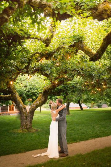 Kiss under the Apple Trees
