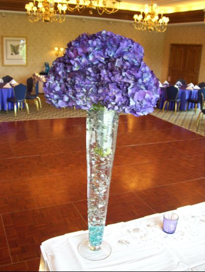 Tall Arr Purple Hydrangeas