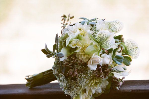 Branch Out Floral and Event Design