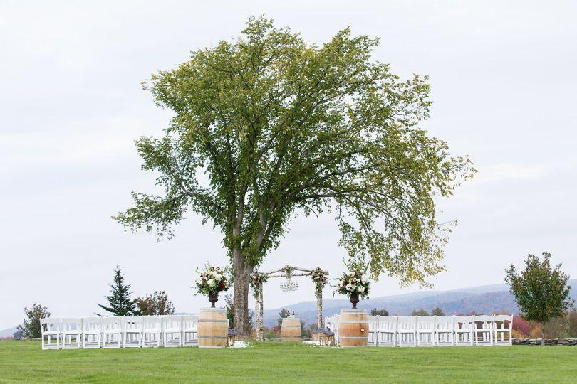 Tree over the wedding ceremony space