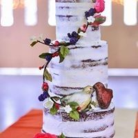 Tmx 1491750500597 103607699560620644239322792429984343845611n Grosse Pointe, Michigan wedding cake