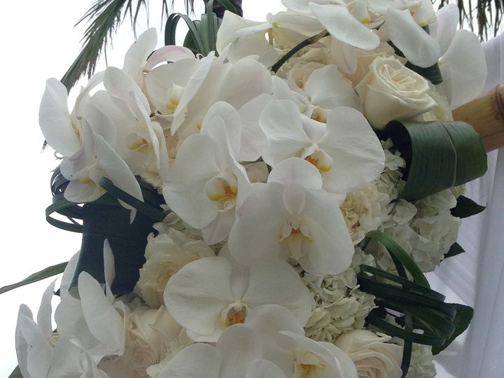 Tmx 1492033843600 Img5964 Van Nuys, California wedding officiant