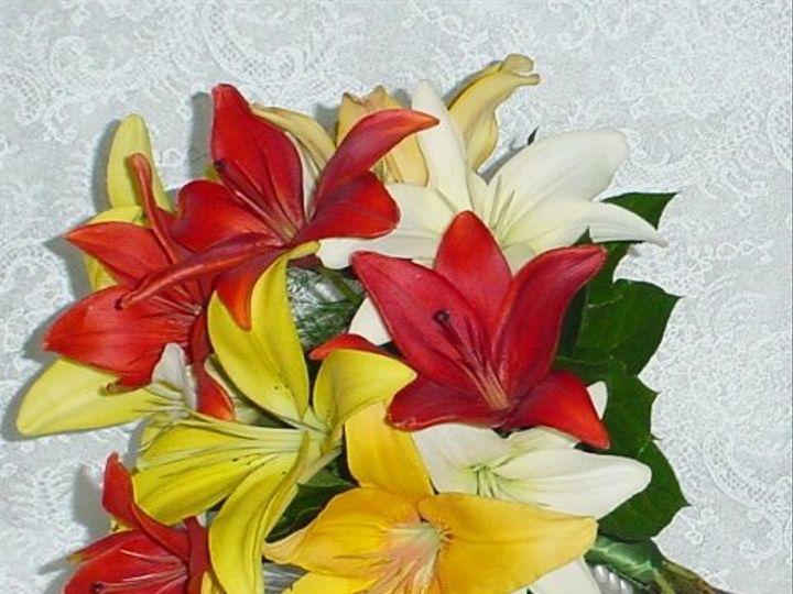 Tmx 1218327317344 DSC01765 Southampton wedding florist