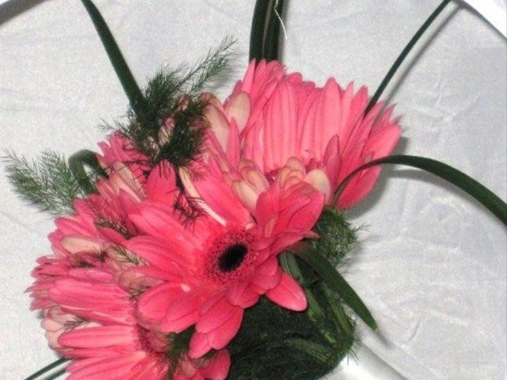 Tmx 1224860556907 Oct18020 Southampton wedding florist