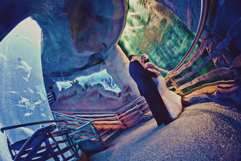 Downtown Aquarium Reviews & Ratings, Wedding Ceremony ...