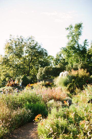 Wills Perennial Garden