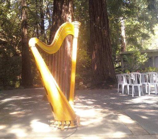 Tmx 1302386345545 DeerParkVilla San Francisco wedding ceremonymusic