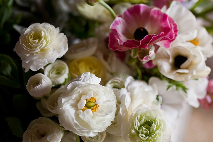 Ranunculus and anenomes