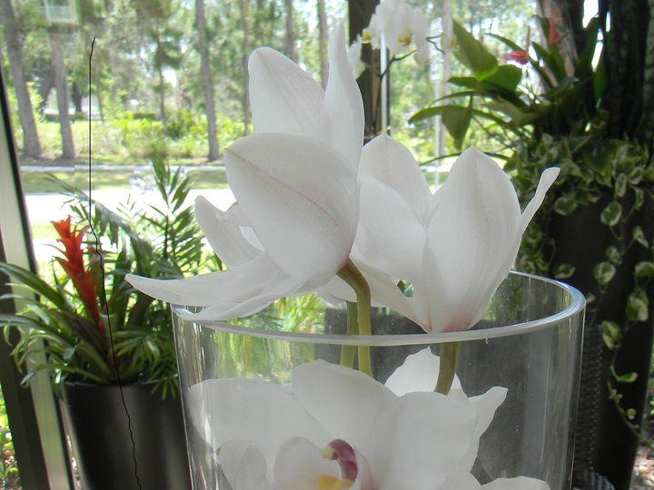 Tmx 1467063161433 229 Largo, FL wedding florist