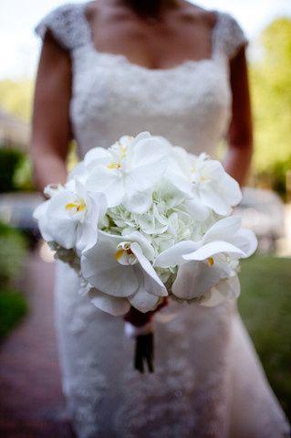 Tmx 1370887402311 Channing Johnson Photography 004 Boston, Massachusetts wedding florist