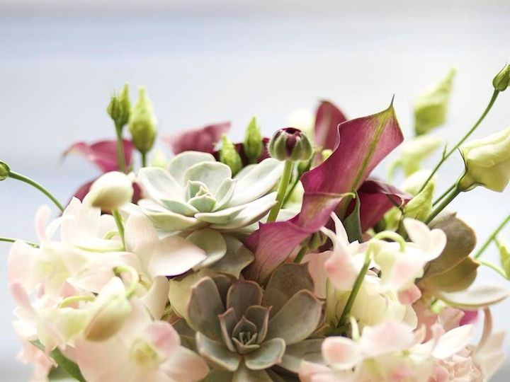 Tmx 1486568176191 Img7718 Boston, Massachusetts wedding florist