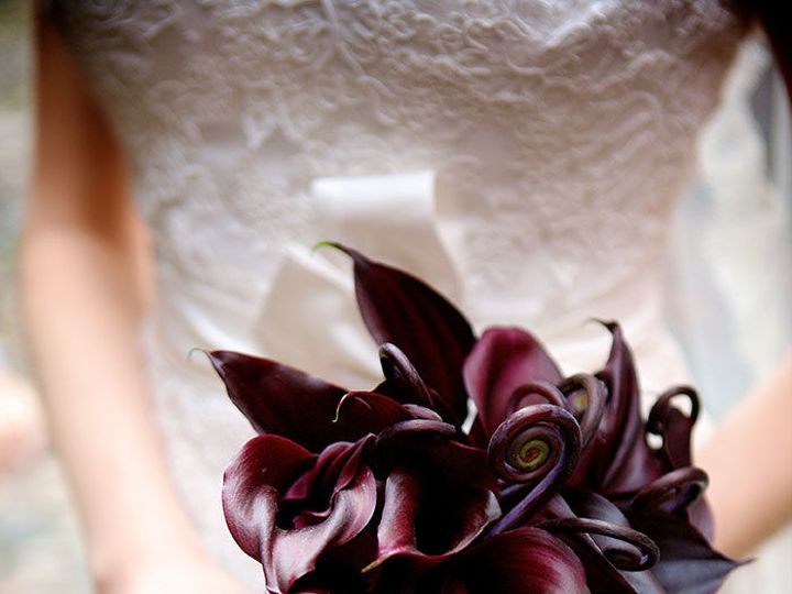 Tmx 1528681018 1c51544f2a71d722 1528681017 1378cb052d7d3427 1528681011221 1 Angela Ryan MJ 119 Boston, Massachusetts wedding florist
