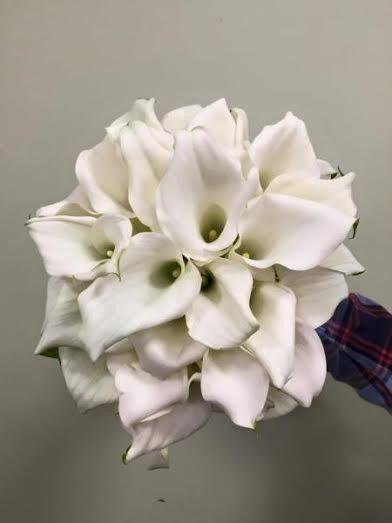 Tmx 1458244361574 1b442761 03a4 48d1 A0b6 E6456ca6ca33 West Islip, NY wedding florist