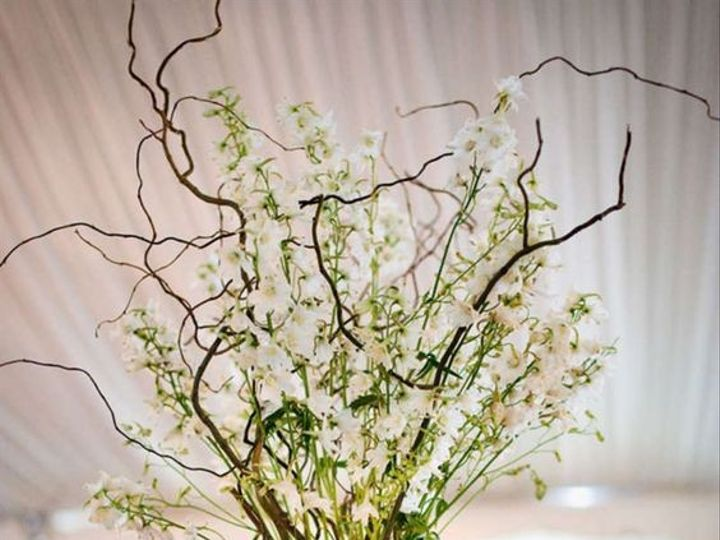 Tmx 1458244589064 C223a8e3e5c1447709e46da4b3b0c769 West Islip, NY wedding florist