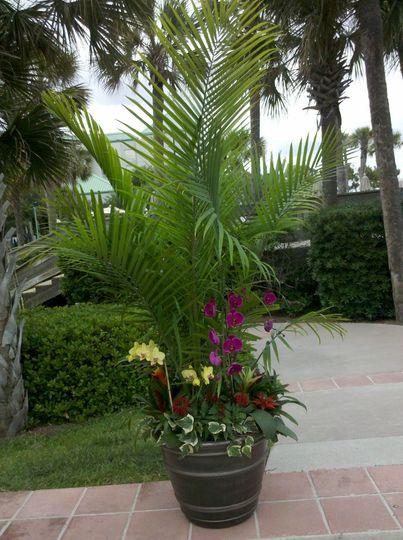 Palmflowercontainer